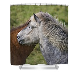 Shower Curtain featuring the photograph Lean On Me by Elvira Butler