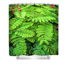 Shower Curtain featuring the photograph Leaves by Charuhas Images