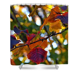Leaves Of Autumn Shower Curtain by Stephen Anderson