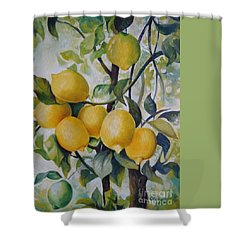 Shower Curtain featuring the painting Lemons by Elena Oleniuc