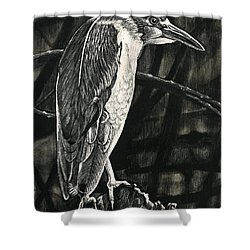 Lettuce Lake Shower Curtain