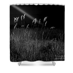 Light Shower Curtain by A K Dayton