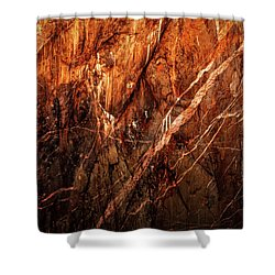 Light And Shadow Shower Curtain by Rick Furmanek