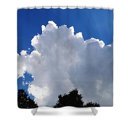 Light And Shadows Shower Curtain by Warren Thompson
