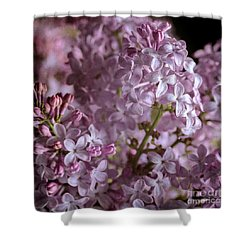 Lilac Bouquet II Shower Curtain