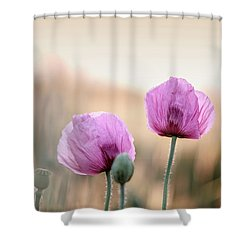 Lilac Poppy Flowers Shower Curtain