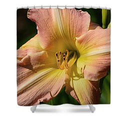 Shower Curtain featuring the digital art Lily Close Up  by Lyle Crump