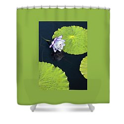 Shower Curtain featuring the photograph Lily Love by Suzanne Gaff