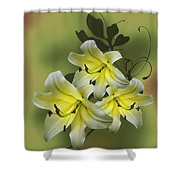 Lily Trio Shower Curtain by Judy Johnson