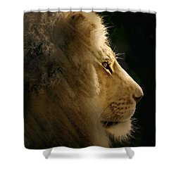 Lion Of Judah II Shower Curtain by Sharon Foster