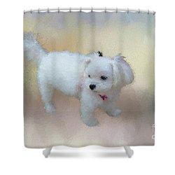 Little Cutie Shower Curtain by Eva Lechner