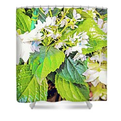 Shower Curtain featuring the photograph Little Orchids by Mindy Newman