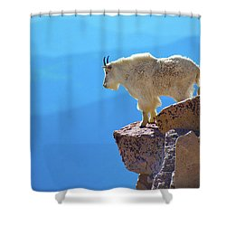 Living On The Edge Shower Curtain by John De Bord