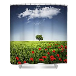 Shower Curtain featuring the photograph Lone Tree A Poppies Field by Bess Hamiti
