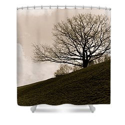 Lonely Tree Shower Curtain by Sergey Simanovsky