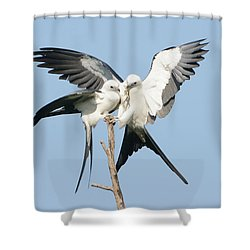 Love Lizard Shower Curtain by Jim Gray
