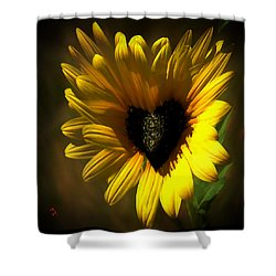 Love Sunflower Shower Curtain