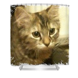 Ellie Kitty Shower Curtain