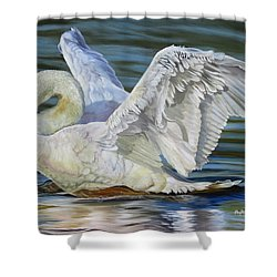 Lovely Shower Curtain by Phyllis Beiser