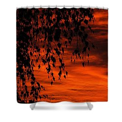 Lustre Shower Curtain