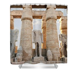 Shower Curtain featuring the photograph Luxor by Silvia Bruno