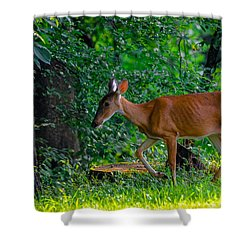 Made In The Shade 2 Shower Curtain