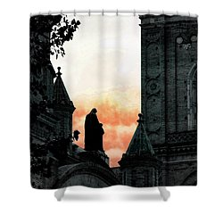 Madonna And Child II Shower Curtain by Al Bourassa