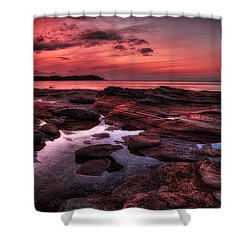 Madrona Shower Curtain by Randy Hall