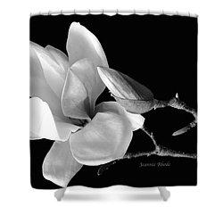 Magnolia In Monochrome Shower Curtain