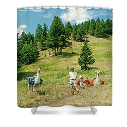 Man Posing With Llamas In A Beautiful Grassy Meadow Shower Curtain by Jerry Voss