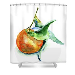 Mandarin Fruits Shower Curtain