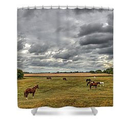 Maryland Pastures Shower Curtain