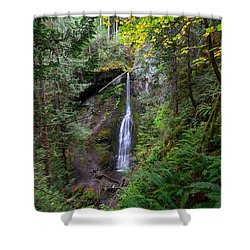 Marymere Falls Shower Curtain