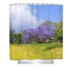 Maui Upcountry Shower Curtain by Ron Dahlquist - Printscapes