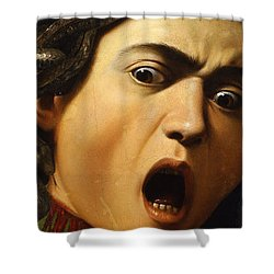 Medusa Shower Curtain by Caravaggio