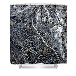 Metamorphic Shower Curtain