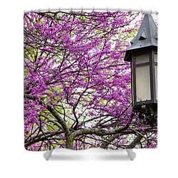 Michigan State University Spring 7 Shower Curtain