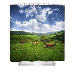 Shower Curtain featuring the photograph Milka by Bess Hamiti