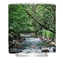 Minnehaha Creek Shower Curtain