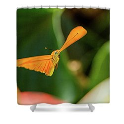 Miracle Of Flight Shower Curtain