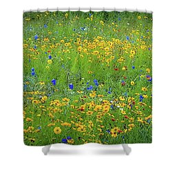 Mixed Wildflowers In Texas 538 Shower Curtain