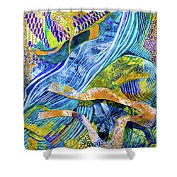 Mollusk Mondays Shower Curtain by Polly Castor