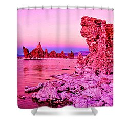 Mono Lake Dawn Shower Curtain by Dennis Cox