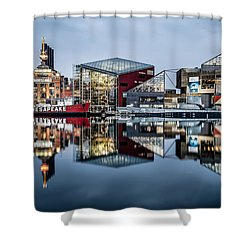 More Baltimore Shower Curtain