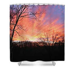 Morning Has Broken Shower Curtain by Kristin Elmquist