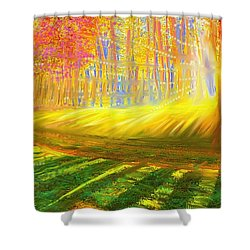 Shower Curtain featuring the painting Morning by Hidden Mountain