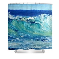 Morning Surf Shower Curtain by Fred Wilson