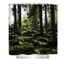 Shower Curtain featuring the photograph Mossy Rocks by Kennerth and Birgitta Kullman