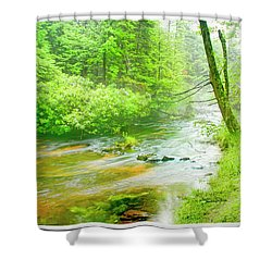 Mountain Stream, Pocono Mountains, Pennsylvania Shower Curtain
