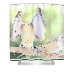Shower Curtain featuring the digital art Mourning Dove Pair  by A Gurmankin
